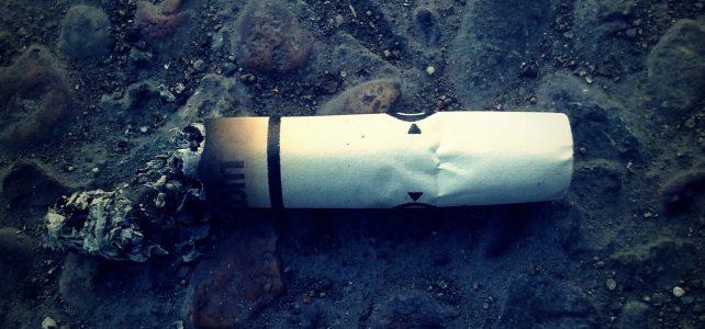 A talajba kerülő cigarettacsikkek gátolhatják a növények fejlődését
