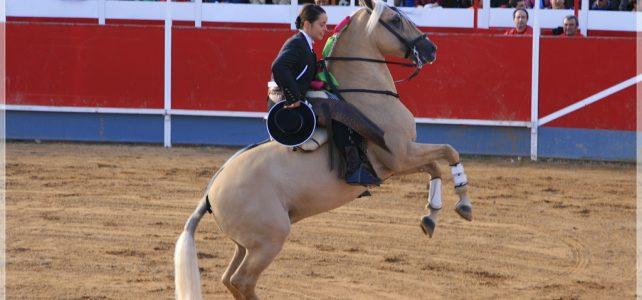 Nemzeti Vágta – Szombaton kezdődik a lovas seregszemle