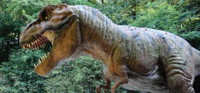 Gyors volt az élővilág regenerációja a 66 millió évvel ezelőtti meteoritbecsapódás után